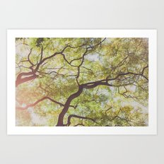 Look up Art Print