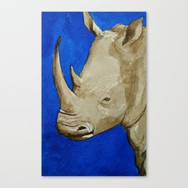 Rhinosophical Canvas Print