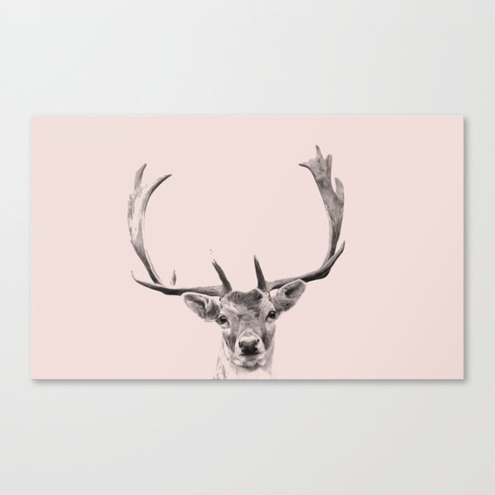 Oh deer , I am in pink Canvas Print