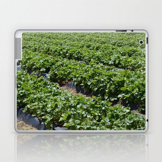 Strawberry Field Laptop & iPad Skin