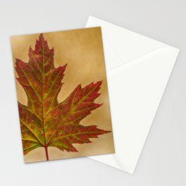 Autumn Color Stationery Cards