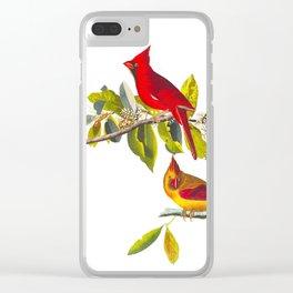 Cardinal Vintage Bird Illustration Clear iPhone Case