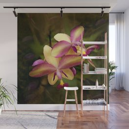 Hawaiian Sunrise Orchid Wall Mural