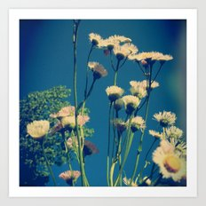 Coming Up Daisies Art Print