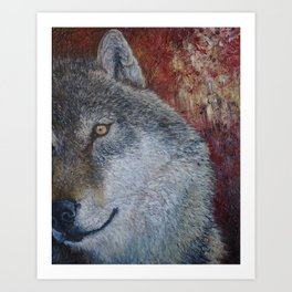 Wolf (Canis lupus) Art Print