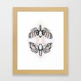 Polillas Framed Art Print
