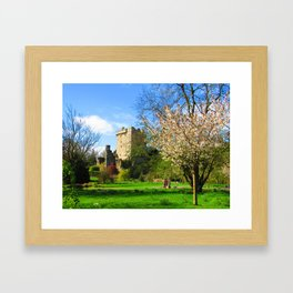 Blarney Castle in Spring Framed Art Print