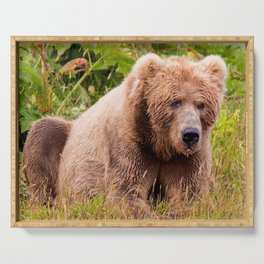 Brown Bear Kodiak Serving Tray