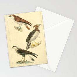 Osprey, American Harpy, Common Caracara15 Stationery Cards