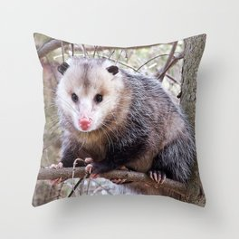 Possum Staredown Throw Pillow