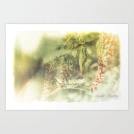 Tela Aranearum Art Print