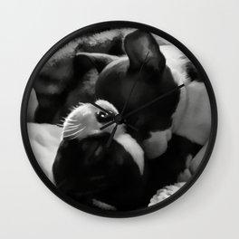 Sleeping Beauties - Boston Terrier Wall Clock