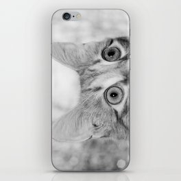What's New KittyCat iPhone Skin