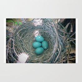 Nest of Eggs Rug