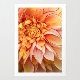Free Spirit - Yellow Dahlia Flower Photo - Modern Botanical Art Art Print