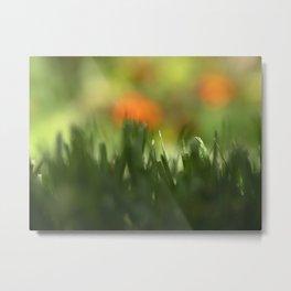 Fuzzy Landscape Metal Print