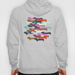 colored doggie pattern Hoody