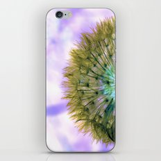 Dandelion Sunrise iPhone & iPod Skin