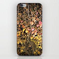 Change In The Night iPhone & iPod Skin