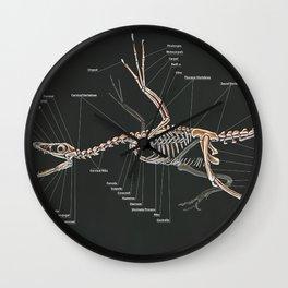 Microraptor Gui Skeletal Study Wall Clock