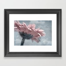 WINTER GERBERA Framed Art Print