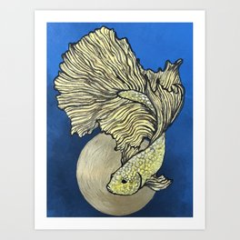 Golden Betta Art Print