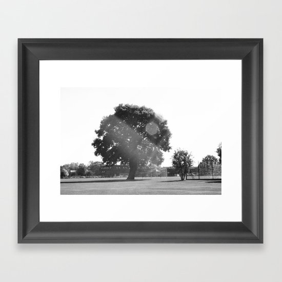 Tree in the Sun Framed Art Print