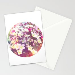 Flowers At The Chalet Stationery Cards