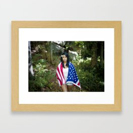 America. Framed Art Print