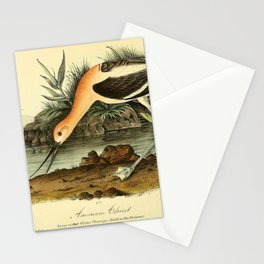 American Avocet Stationery Cards