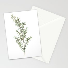 Baby Blue Eucalyptus Watercolor Painting Stationery Cards