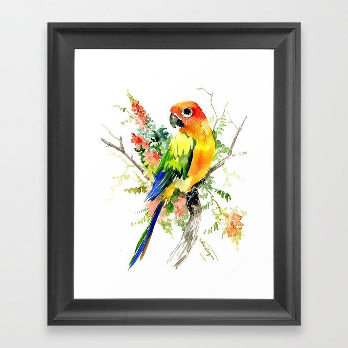 Sun Conure Parakeet, tropical colors parrot art design Gerahmter Kunstdruck