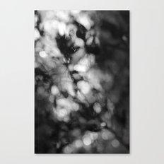 Faded Streams  Canvas Print