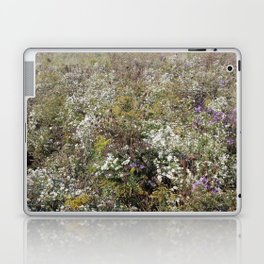 Foreign Fields Laptop & iPad Skin