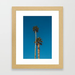 Palm Springs Palms Framed Art Print