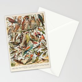 Adolphe Millot - Oiseaux espèces utiles 02 - French vintage ornithology poster Stationery Cards