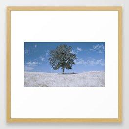 Tree in infra red Framed Art Print