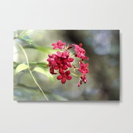 Secret Garden Red Flowers #society6 #artprints #buyart Metal Print