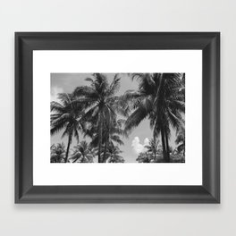 Palm Trees Black and White Photography Framed Art Print