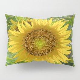 Sunflower. Summer dreams Pillow Sham