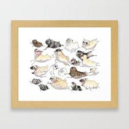 Pugs on the Move Framed Art Print