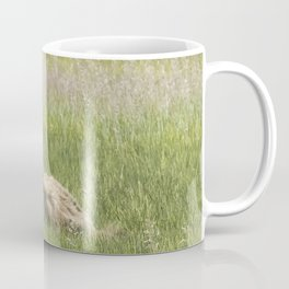 Young Brown Bear Cub and Its Mother, No. 1 Coffee Mug