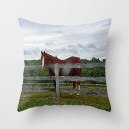 Horse Time Throw Pillow