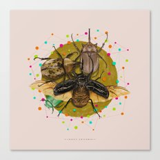 Insect Universe Canvas Print