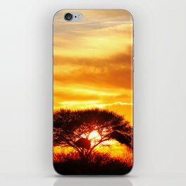 African sunrise iPhone Skin