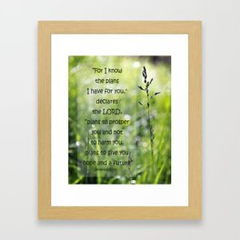 Jeremiah 29:11 Typography, For I know the Plans Framed Art Print
