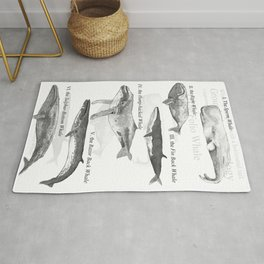 I. The Folio Whale Rug