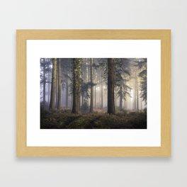 Puddletown Forest Framed Art Print