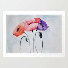 Poppies no 3 Art Print