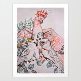 Cacatuidae Family Art Print